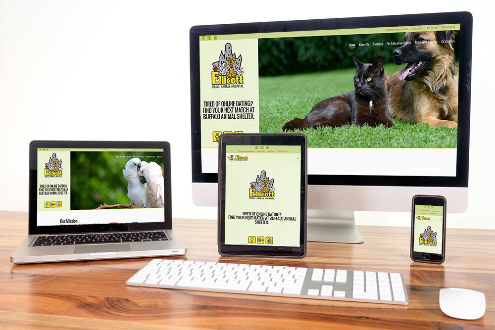 custom-website-design-veterinary
