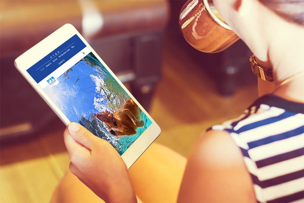 Veterinary Coastal iPad
